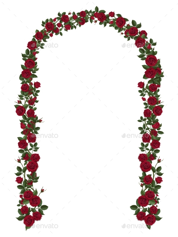 Arch of Red Climbing Roses - Flowers & Plants Nature