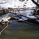 Small River in Forest at Springtime - VideoHive Item for Sale
