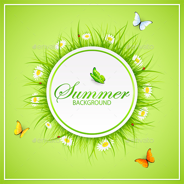 Summer Green Background with Grass and Butterflies - Seasons Nature