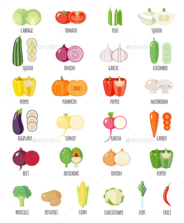 Set of Vegetables Icons with their Name - Food Objects