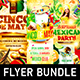 Mexican Party Flyer Bundle - GraphicRiver Item for Sale