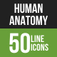 Human Anatomy Line Green & Black Icons