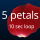 5 Rose Petals  - VideoHive Item for Sale