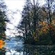 Late Fall. Pond in the Park - VideoHive Item for Sale