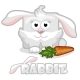 Cartoon Square Rabbit with Carrot - GraphicRiver Item for Sale