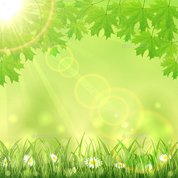 summer green nature background by losw graphicriver