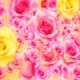 Wedding Roses - VideoHive Item for Sale