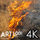 Steppe Fires - VideoHive Item for Sale