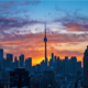 City Skyline Sunrise Toronto Cn Tower - VideoHive Item for Sale