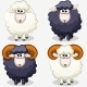 Cartoon Black and White Sheep - GraphicRiver Item for Sale