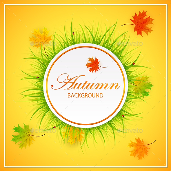 Autumn Orange Background with Grass and Leaves - Seasons Nature