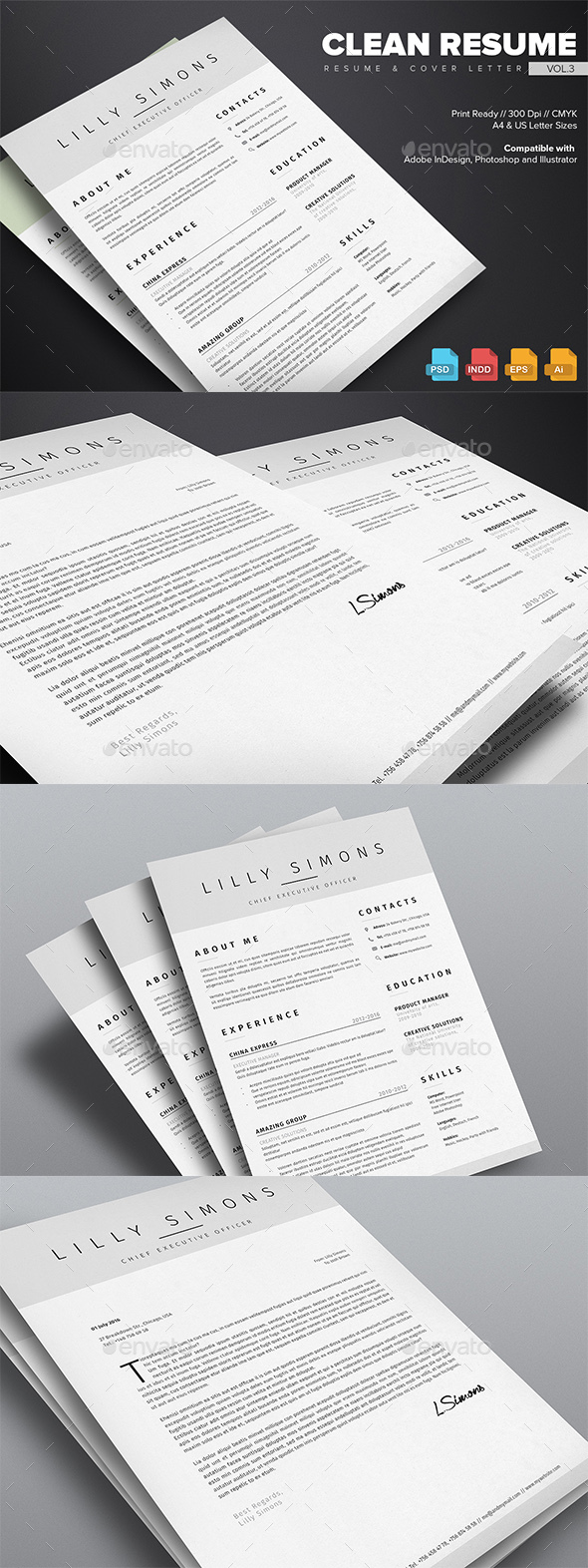 Clean Resume Vol.3
