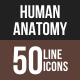 Human Anatomy Line Multicolor Icons