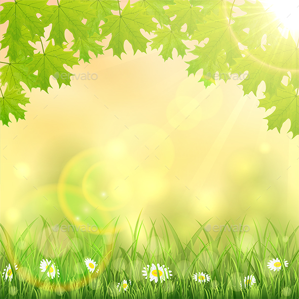 Spring Background with Grass and Maple Leaves - Seasons Nature