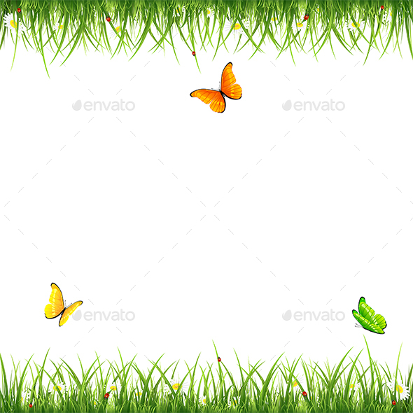 Grass with Butterflies and Ladybugs on White Background - Seasons Nature