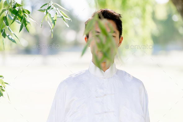 Handsome man practicing thai chi - Stock Photo - Images