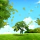 Bright Spring Background - VideoHive Item for Sale