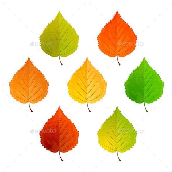 Set of Leaves - Seasons Nature