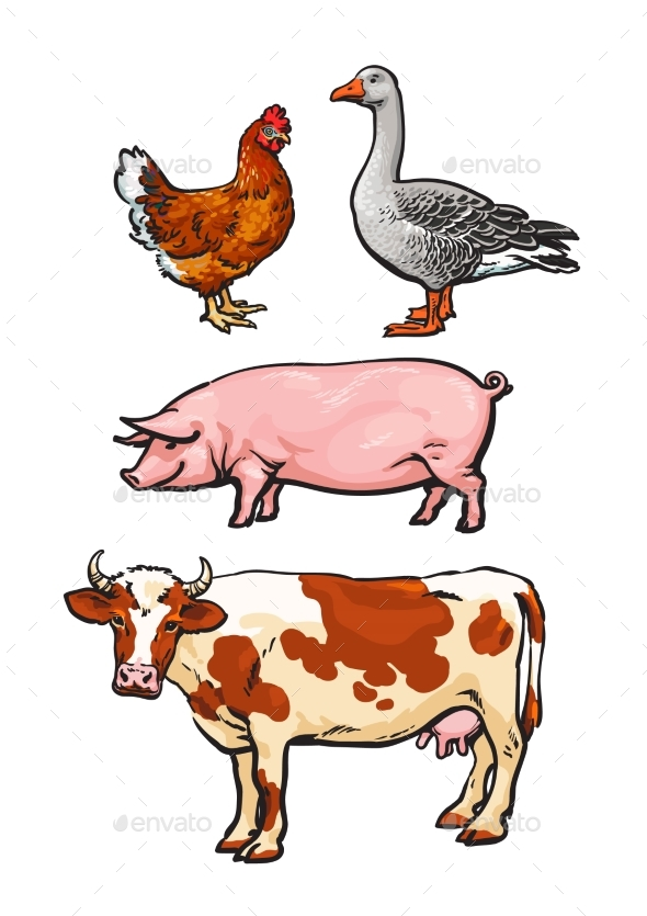 Set of Farm Animals - Animals Characters