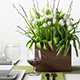 Tulip Centerpiece set - 3DOcean Item for Sale