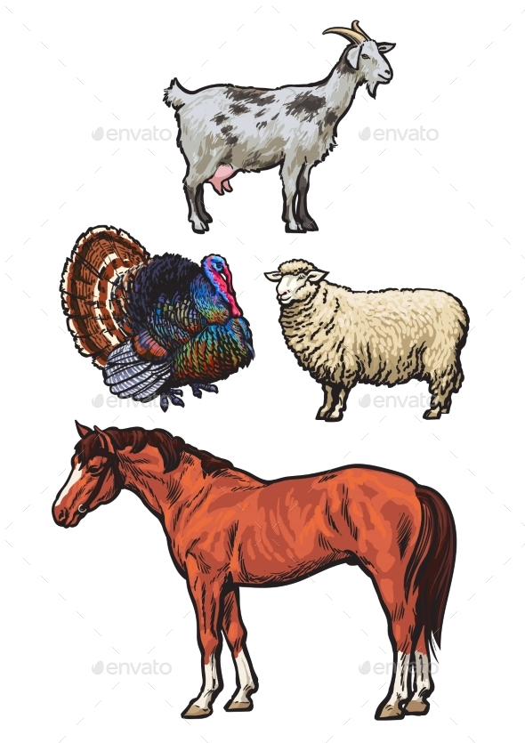 Set of Farm Animals - Animals Characters