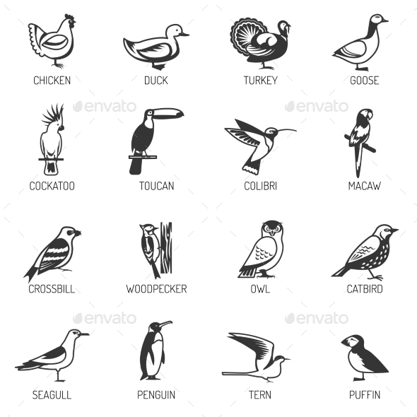Bird Silhouette Set - Animals Characters