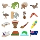 Australia Icons Cartoon - GraphicRiver Item for Sale