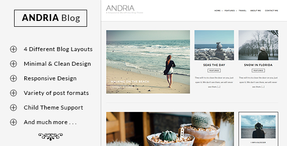 Andria – A Responsive WordPress Blog Theme