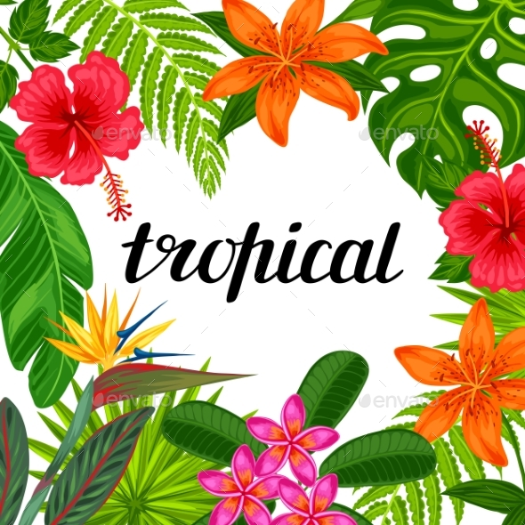 Tropical Paradise Card With Stylized Leaves - Flowers & Plants Nature
