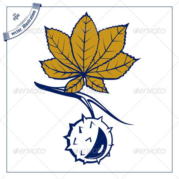 Chestnut Leaves Nut - Flowers & Plants Nature