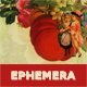 Ephemera–Online Shop and Blog WP Theme in Victorian Style - ThemeForest Item for Sale