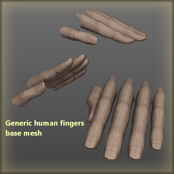 Generic human fingers base mesh - 3DOcean Item for Sale