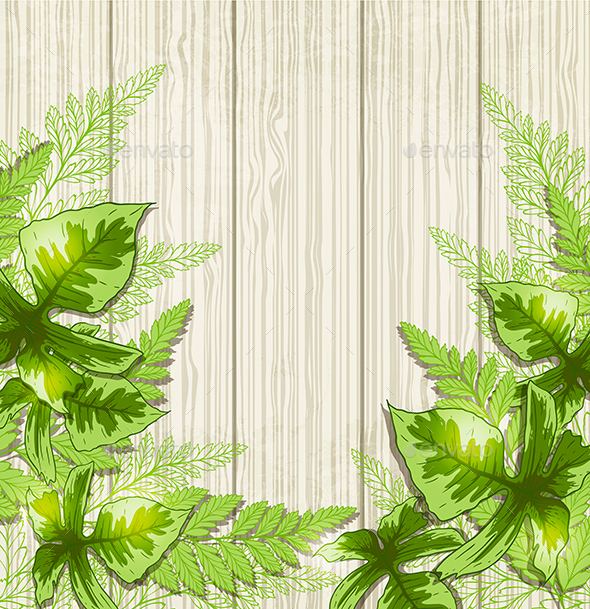 Background with Green Tropical Leaves - Flowers & Plants Nature