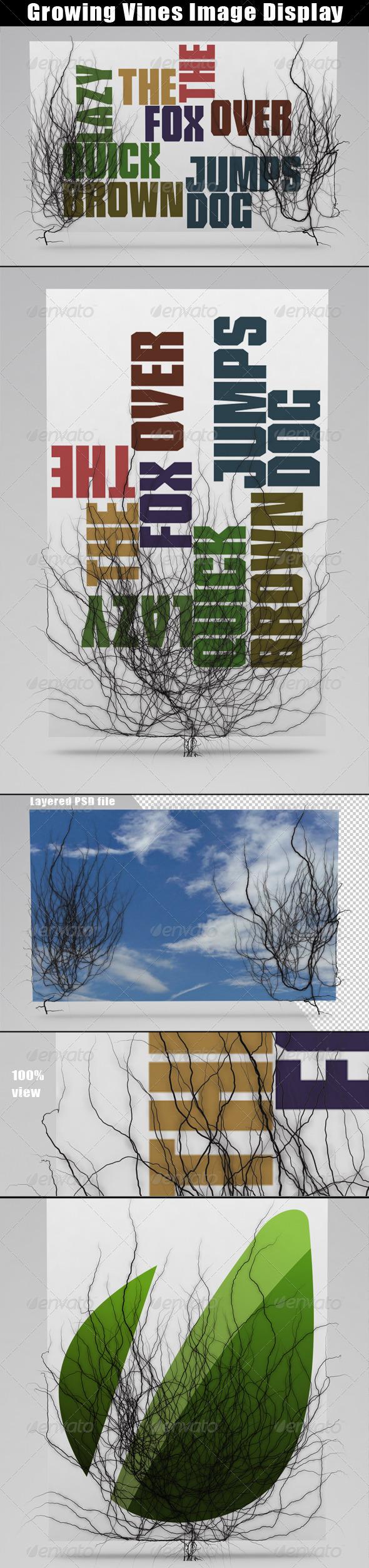 Growing Vines Image Display - Graphics