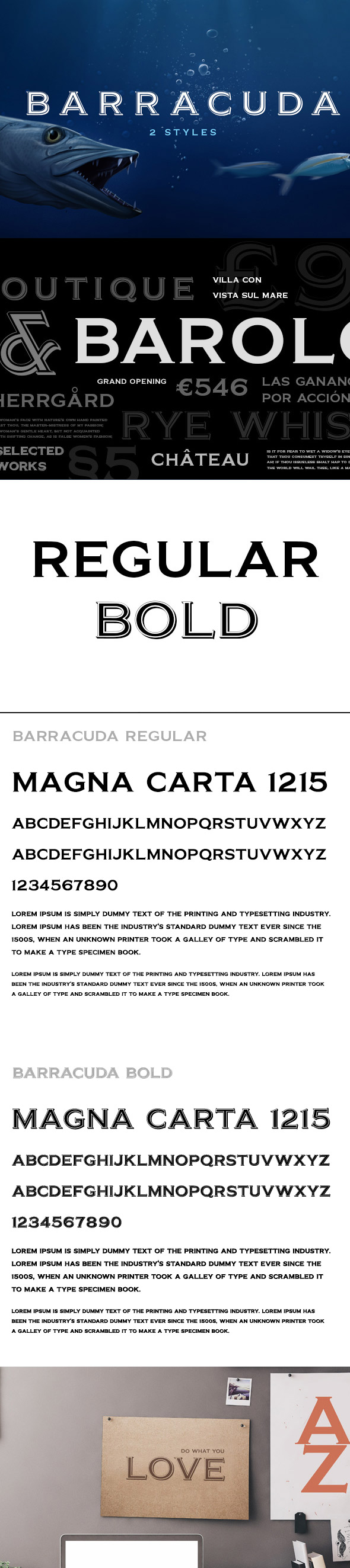 Barracuda - Serif Fonts