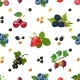 Fresh Berries Seamless Colorful Pattern