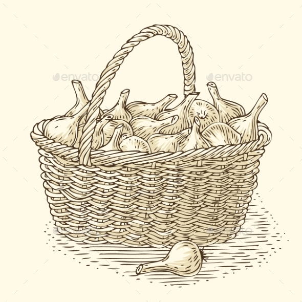 Engraving Wicker Basket with Bulb Onion - Food Objects