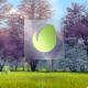 Natural Elegant Logo Animation 2 - VideoHive Item for Sale