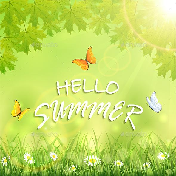 Butterflies and Inscription Hello Summer - Seasons Nature