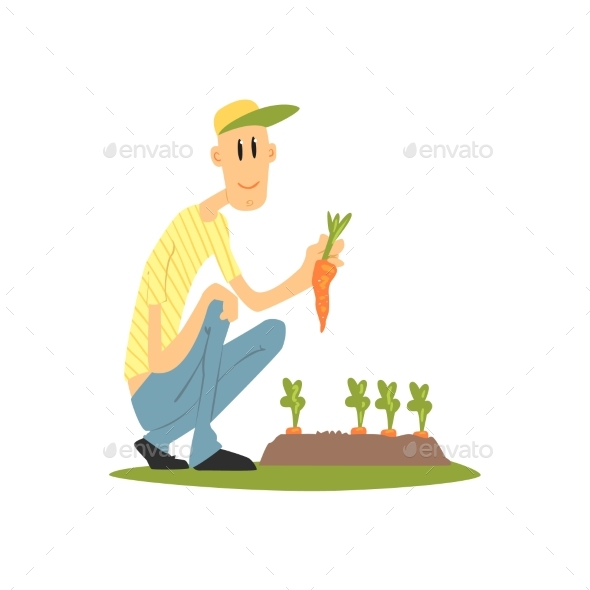 Guy Picking Carrots - Backgrounds Decorative