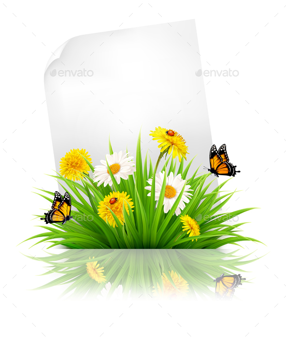Sheet of Paper with Grass and Spring Flowers - Flowers & Plants Nature