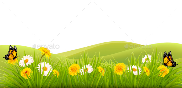 Spring Background with Grass Flowers and Butterflies - Landscapes Nature