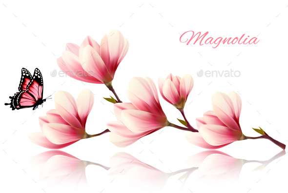 Nature Background with Blossom Branch of Pink Magnolia - Flowers & Plants Nature