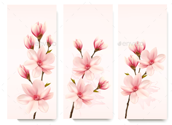 Three Magnolia Banners - Flowers & Plants Nature