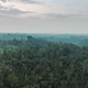 Aerial Dramatic Jungle  13 - VideoHive Item for Sale
