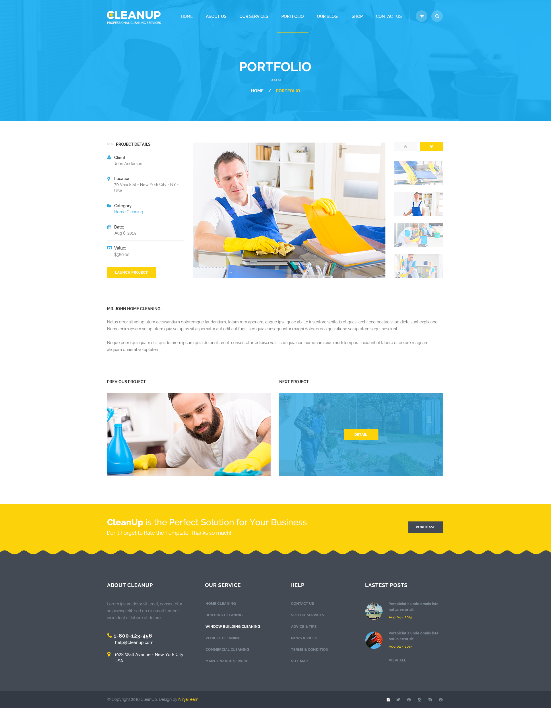 Cleaning service website templates radiofixer laundry dry cleaning services html website template template accmission Image collections