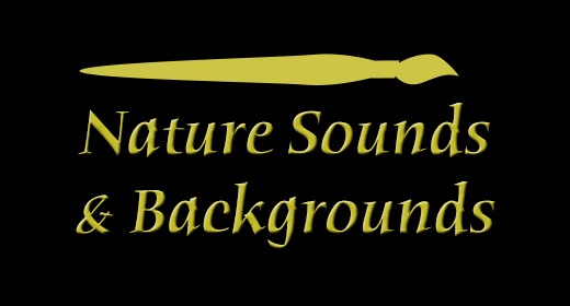 Nature Sounds & Backgrounds