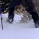Snowshoeing in Grand Tetons - VideoHive Item for Sale