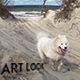 Dog on the Sea - VideoHive Item for Sale