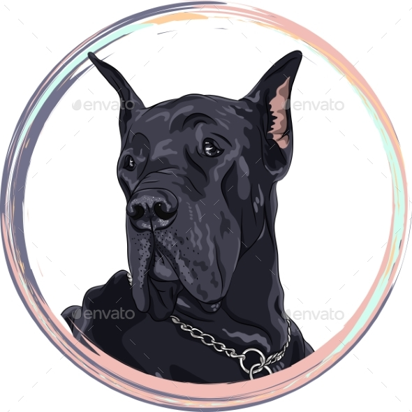 Vector Sketch Domestic Dog Black Great Dane Breed - Animals Characters